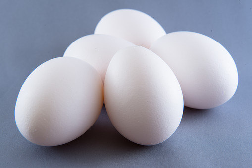 たまご タマゴ 玉子 卵 新鮮 フレッシュ 栄養 ヘルシー 健康 食材 食べ物 収穫 鶏卵 殻 生卵 産む ニワトリ 鶏 タンパク質 たんぱく質 蛋白質 動物性食品 白 丸い 楕円