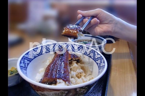 うなぎ 箸で持ち上げるの写真