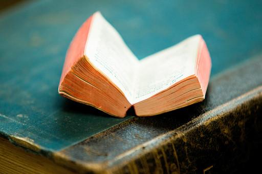 本 ブック 書物 書籍 図書 読書 読む 趣味 勉強 厚い 分厚い ミニ ミニチュア 小さい 小 ページ 開く めくる 捲る 置く 接写 クローズアップ アップ 積み重ねる 重ねる 乗せる 乗る 豆本