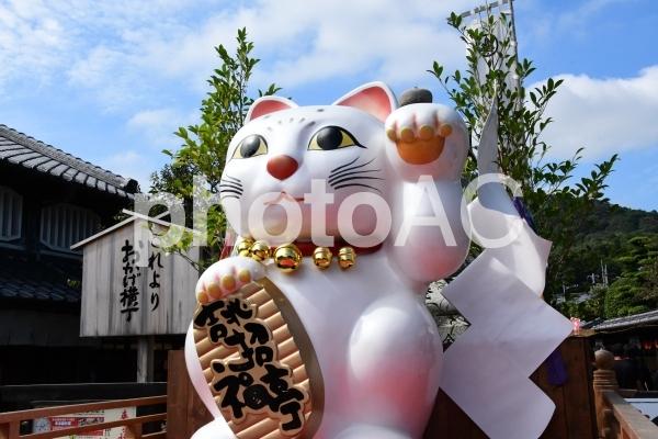 おかげ横丁 招き猫の写真