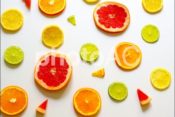 柑橘類04の写真