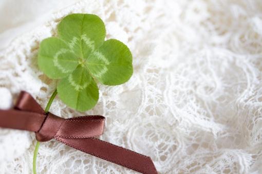 クローバー 植物 草 四葉のクローバー 四葉 ラッキーアイテム 幸運 ラッキー 幸せ 緑 グリーン レース ガーリー 四ツ葉 四つ葉 お守り