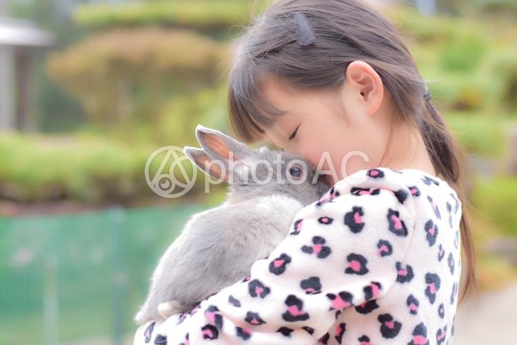 うさぎと女の子の写真