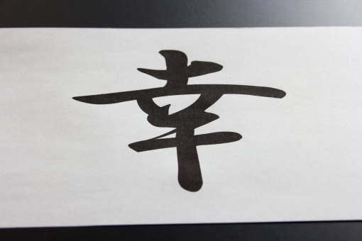 幸 さち サチ 幸福 幸せ しあわせ シアワセ 漢字 日本 日本語 JAPAN KANJI japan kanji Japan Kanji JAPANESE japanese Japanese 幸運 ラッキー 幸い さいわい fortune happy lucky いいこと 良い事 言葉 コトバ