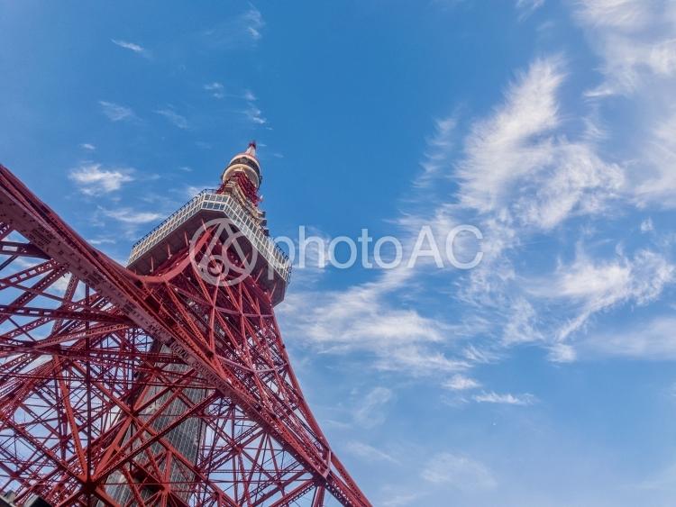 東京タワー画像(左から伸びる)