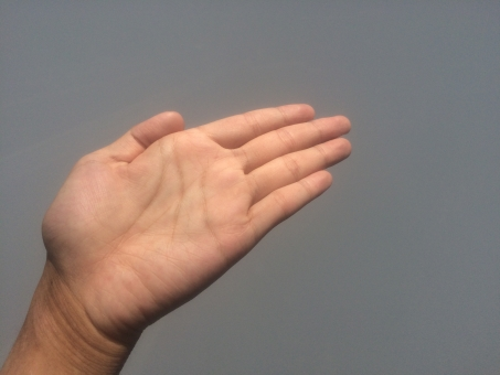 ハンド hand 掌 パーツ サイン 左手 指 フィンガー finger 手相 生命線 結婚線 血行 健康 血管 占い 手の平 ハンドパーツ てのひら 指紋 関節 手汗 皮膚 スキン 肌 ハンドケア 平手 美容 保湿 乾燥 肌色 ゆび て 手首 手荒れ 男性 手 手のひら 素手 素肌 手入れ 背景 灰色 どうぞ 案内 こちら こちらです おすすめ オススメ お薦め お勧め あっち あちら あちらです あっちです