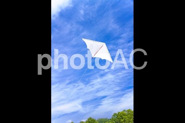 青空とカイト_2の写真