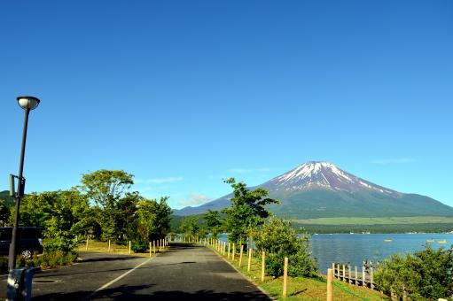 山中湖 きらら 富士五湖 富士山 世界遺産 春 5月 青い空 青空 青 散歩 ウォーキング 公園 観光 湖畔 湖岸 岸辺