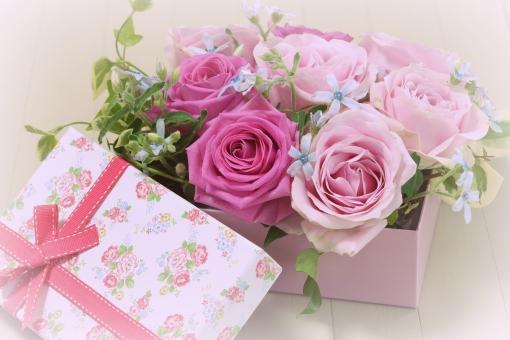 リボン 水色 記念日 結婚式 フラワーアレンジメント 小物 雑貨 女性 祝福 バレンタイン バレンタインデー ブルースター アイビー テーブルフォト 5月 6月 黄色 マトリカリア ギフト 母の日 父の日 緑 植物 初夏 5月 6月 五月 六月 おめでとう メッセージ カード フラワーアレンジ 行事 バラ ばら 薔薇 花 華やか きれい 贈り物 美 美しい アレンジ 花束 バースデー 誕生日 お祝い プレゼント バック 素材 背景素材 背景写真 ローズ フラワー 花びら バックグラウンド エステ アレンジメント いやし 綺麗 かわいい 可愛い 癒し 美容 健康 アロマ 背景 壁紙 春 明るい ピンク 夏 秋 冬 イメージ