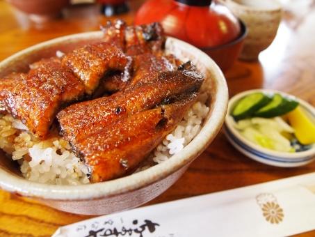 うなぎ 鰻 ウナギ 土用の丑 うな丼 鰻丼 美味しい おいしい 夏