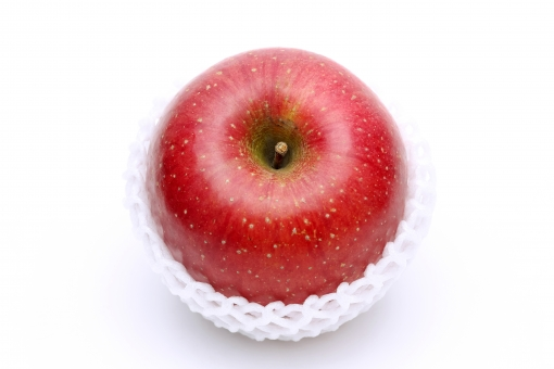 リンゴ りんご 林檎 果物 フルーツ デザート 赤 赤色 食べ物 食物 食材 新鮮 自然食品 自然 植物 実 光沢 艶 農産物 甘い フレッシュ 果実 ネット 網 保護 保護材 梱包 梱包材 包材 クッション クッション材 発泡スチロール 包む くだもの アップ クローズアップ 食事 余白 コピースペース 1個 1つ 一つ 1つ 茎 枝 白バック 白背景 白