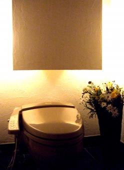 トイレ 便所 厠 洋式便器 個室 花 おしゃれ 綺麗 きれい ウォシュレット お手洗い 化粧室 rest room 便器 ライト 間接照明
