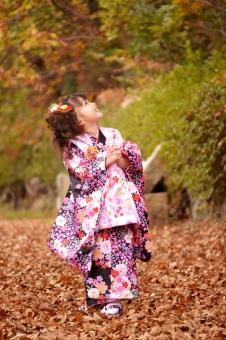 七五三 女の子 子ども 子供 こども 三歳 3歳 被布 着物 祝 お祝い 秋 落ち葉 mdfk023