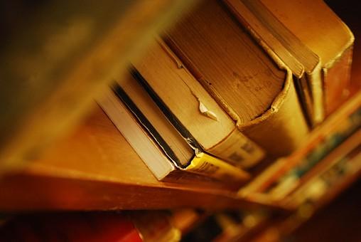 本 ほん ホン 書籍 ブック 書物 洋書 雑貨 読書 書 古書 古本 本棚 図書館 棚 陳列 辞典 辞書 小説 文学 ハードカバー 知識 趣味 図書 紙