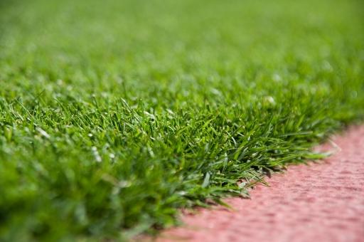 芝生 グラウンド 競技場 接写 サッカー 国立競技場