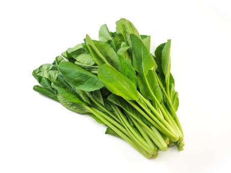 「小松菜 フリー画像」の画像検索結果