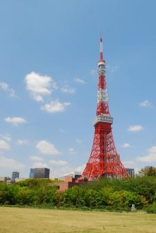 東京 東京タワー タワー 青空 青 空 スカイ 芝生 晴れ 雲 tokyo tokyotower tower sky sunny