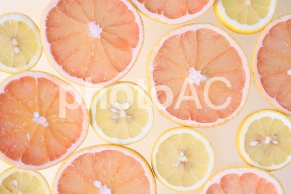 柑橘類の写真