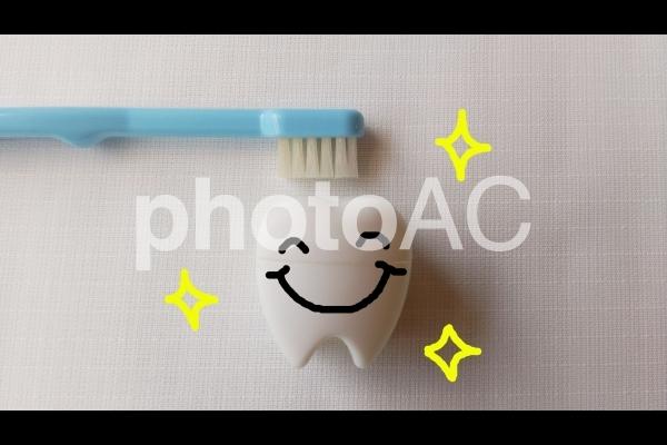綺麗な歯の写真
