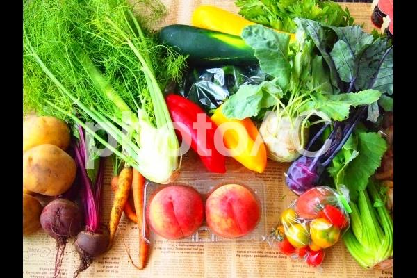 高原の野菜たちの写真