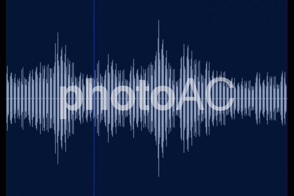音波の写真