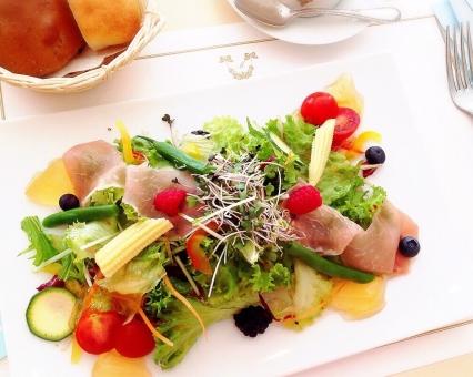 サラダ 野菜 食べる 食べ物 健康 ヘルシー 料理 食事 味 ランチ ディナー レストラン 旬 盛り付け トマト きゅうり キュウリ レタス 皿 栄養 食生活 朝食 カラフル