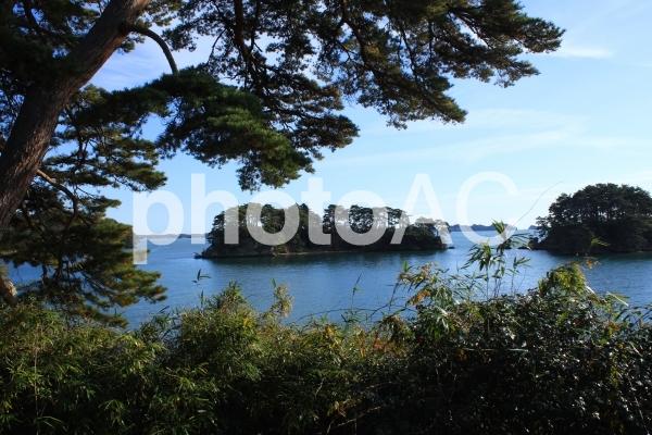 日本三景松島(宮城県)の写真