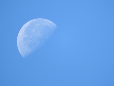 月 朝月 綺麗 きれい キレイ 半月 背景 明るい月 日中の月 昼間の月 自然 クレーター