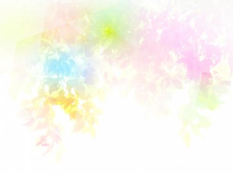 幻想的な木漏れ日イメージの抽象背景の写真