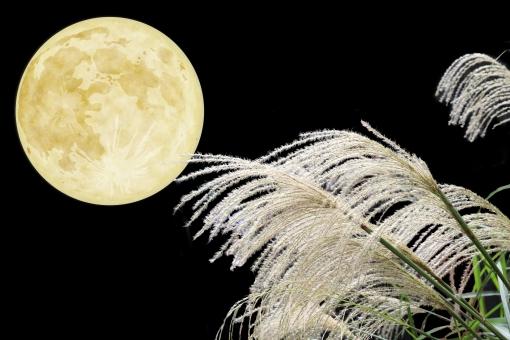 満月の月見とすすき-中秋の名月の写真