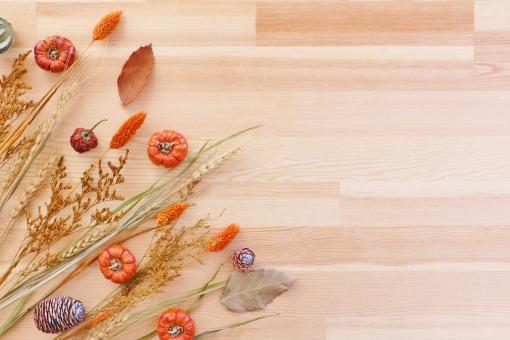 秋のフレーム 実りの秋の写真