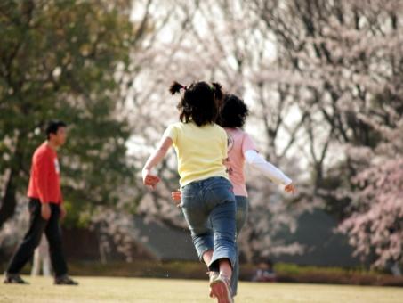 子供 少女 走る かけっこ 春 桜 花 さくら 芝生 公園 追いかけっこ
