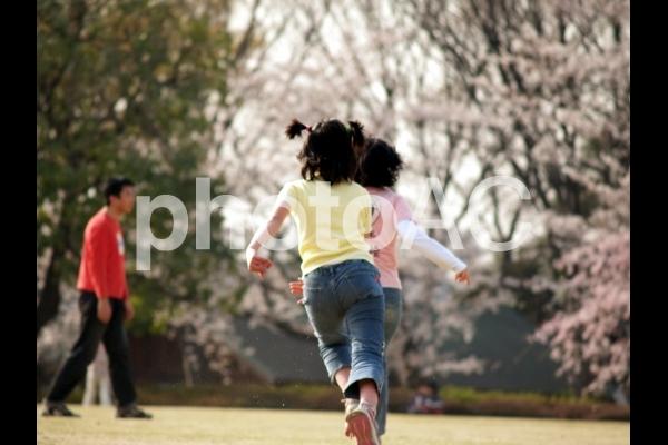 走るの写真