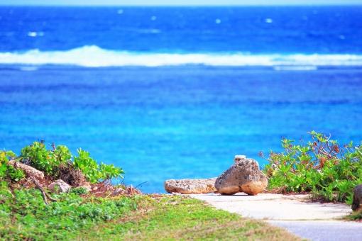 海 海岸 道 岩 石 緑 植物 置物 オブジェ 白波 芝生 通路 リゾート地 水平線 海岸線 青,青色,水色,ブルー,Blue 白,白色,ホワイト,White エメラルドグリーン 観光 バカンス 休暇,癒し 南国 南の島 沖縄 おきなわ ハワイ バリ グアム コピースペース ポストカード