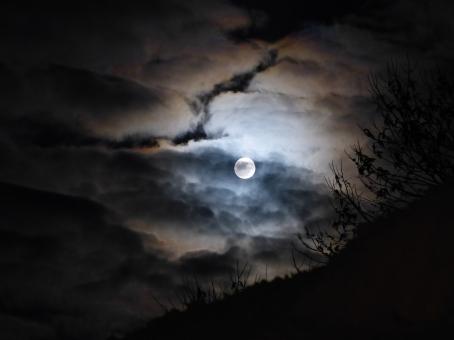 月 天体 お月様 ムーン moon 空 満月 十六夜月 フルムーン 夜 夜空 月夜 光 月光 天体観測 宇宙 衛星 風景 お月見 怪しい 妖しい シルエット 雲 影 月明かり 薄雲 枝 木 自然 背景