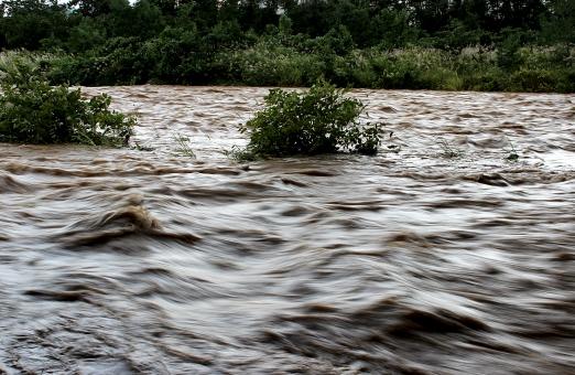 濁流 濁った 川 台風 コーヒー牛乳色 荒れる 大雨 福島市 松川
