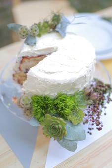 屋外 ガーデンウェディング ケーキ 生クリーム ブルーベリー スポンジ 甘い スイーツ デザート カットケーキ 白 緑 草花 食器 皿 物撮り フォーク 上から 食べ物 お祝い ウェディングケーキ 手作り パティシエ 葉 植物 多肉 多肉植物