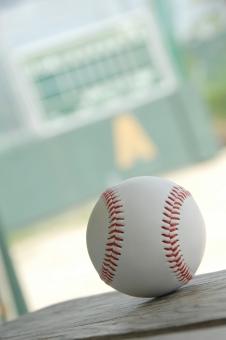 野球 野球ボール ボール ベースボール スタジアム グラウンド 野球場 球場 ホームラン ヒット 甲子園 メジャーリーグ 夏 球児 スポーツ レジャー 社会人野球 青春 部活 部活動 野球部