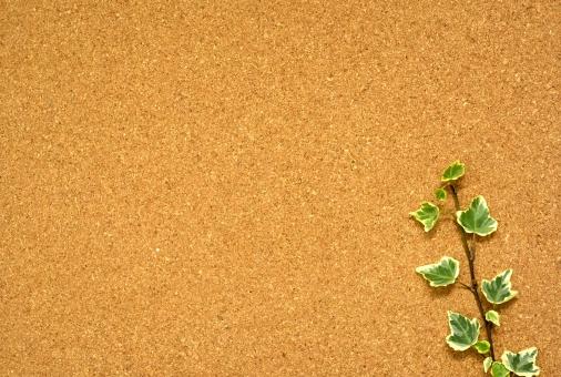 コルクボード コルク 植物 アイビー 葉 背景 背景素材 テクスチャー テクスチャ 自然 メッセージカード コピースペース 緑 グリーン ブラウン フレーム