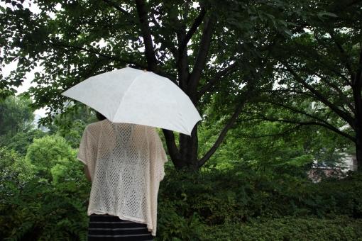 女性 曇り じめじめ 梅雨 夏 6月 日傘 植物 自然 木 草 雨 しとしと 半袖 傘