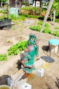 植物 緑 わかば 若葉 ポンプ ガッチャンポンプ 井戸 水 水やり 古い 昭和 大正 明治 水道 手動