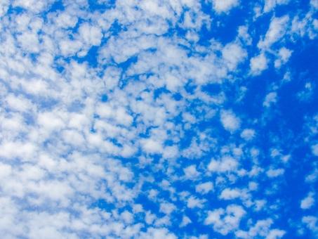秋空 秋 空 雲 鱗雲 いわし雲 天高く 羊雲 空高く 青空 青 スカイブルー 白 ホワイト 細切れ 細かい 綿 秋晴れ 天気 雨 予報 気象 お天気 天空 広がる