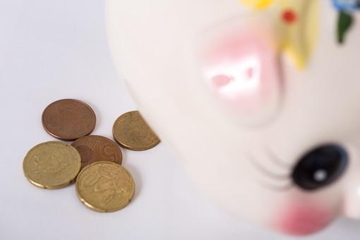 お金 コイン 硬貨 現金 通貨 貨幣 小銭  つり銭 マネー 外国 海外 外貨 貯金  貯蓄 金融 経済 ビジネス 価値 貯金箱 豚 ブタ ぶた 貯める 白バック 白背景 アップ コツコツ ユーロコイン ユーロ セント