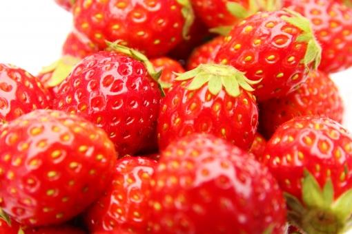 いちご イチゴ 苺 果物 デザート スイーツ 季節 シーズン ブランド 品種 とちおとめ 糖度 カロリー レシピ 食べ物 くだもの 素材 背景 背景素材 冬~春 ストロベリー Strawberry strawberry STRAWBERRY 日本 国内 栽培 イチゴ狩り 食べ放題 健康