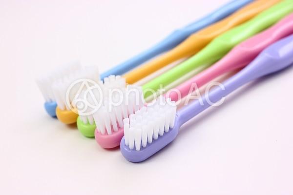 直置きされた5本の歯ブラシ2の写真