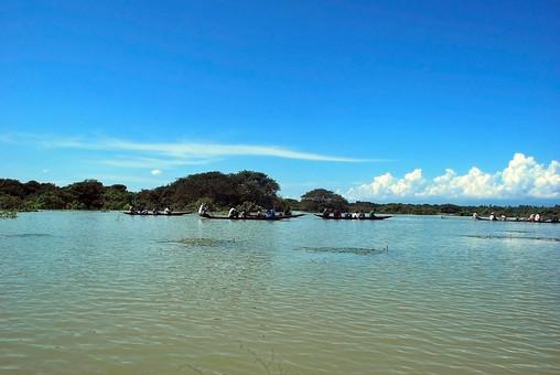 バングラディッシュ 外国 海外 自然 風景 景色 環境  植物 緑 晴れ 晴天 森林 樹木 樹 木 木々 河 川 河川 流れ 水 水面 ボート 手漕ぎ船 船 マングローブ