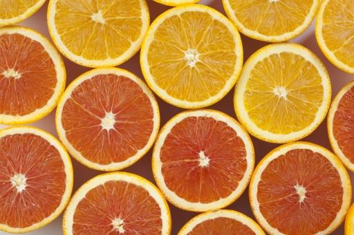 オレンジ-20の写真