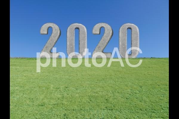 2020年の写真
