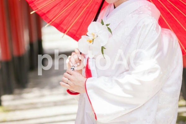 傘をさす花嫁の写真