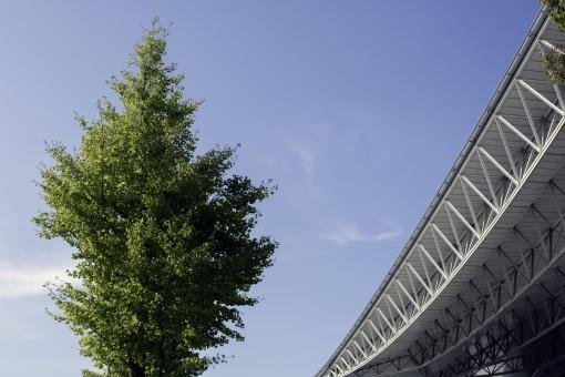 イベント会場 イベント 会場 幕張 メッセ 幕張メッセ 鉄骨 トラス 木 木 緑 青 空 青空 雲 街路樹